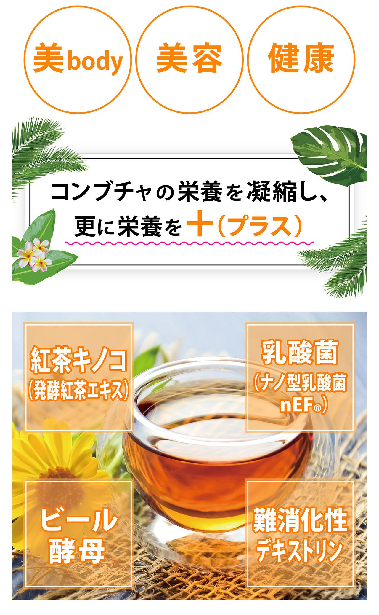 美body 美容 健康 コンブチャの栄養を凝縮し、 更に栄養を +(プラス) 紅茶キノコ (発酵紅茶エキス) 乳酸菌 (ナノ型乳酸菌 nEF®) ビール酵母 難消化性デキストリン